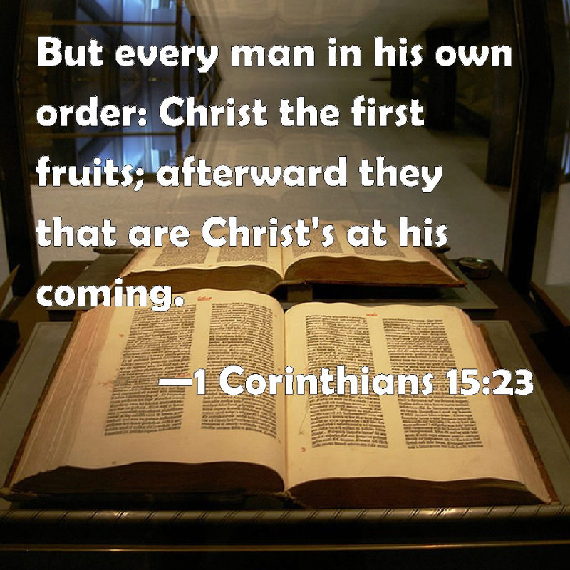 image from biblepic.com